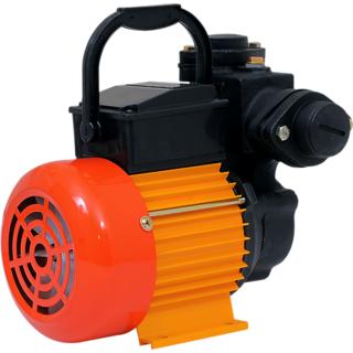 GGM Pumps Domestic Monobloc Self Priming ESP 050 - 0.5 HP