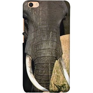 FUSON Designer Back Case Cover For Vivo Y55L :: Vivo Y55 (Close Up Portrait Of A Baby Elephant Long Ears Strips Forest)