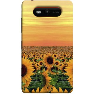 FUSON Designer Back Case Cover for Nokia Lumia 820 (Oils Vitamin Summer Seasons Drink Tasty Food Wallpapers )