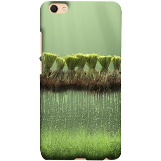 FUSON Designer Back Case Cover For Oppo F3 (Sheaves Of Recently Harvested Rice Hanging To Dry)
