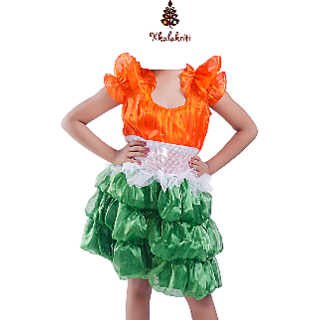 Tiranga Frock Patriotic Theme Fancy Dress For Girls