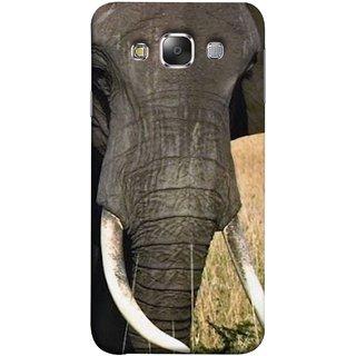 FUSON Designer Back Case Cover for Samsung Galaxy E5 (2015)  :: Samsung Galaxy E5 Duos :: Samsung Galaxy E5 E500F E500H E500Hq E500M E500F/Ds E500H/Ds E500M/Ds  (Close Up Portrait Of A Baby Elephant Long Ears Strips Forest)