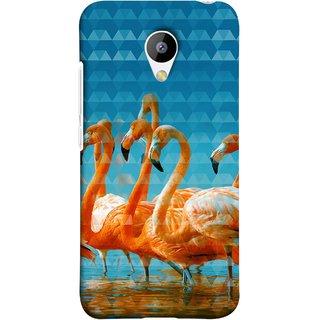 FUSON Designer Back Case Cover for Meizu M3 (Animal Birds Long Beak Beautiful Wallpaper Designs)
