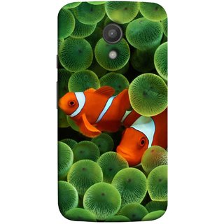FUSON Designer Back Case Cover for Motorola Moto G2 :: Motorola Moto G (2nd Gen)  (White Orange Two Fish Water Salt Best Wallpapers Sea)