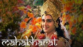 Mahabharat  Hindi  Star Plus -268 Episodes-11 DVDs