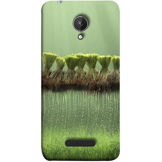 FUSON Designer Back Case Cover for Micromax Canvas Spark Q380 (Sheaves Of Recently Harvested Rice Hanging To Dry)