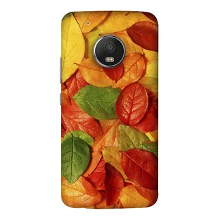 FUSON Designer Back Case Cover For Motorola Moto G5 Plus (Nature Colour Big Lotus Leaves Network Of Veins)
