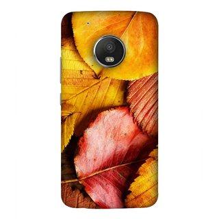 FUSON Designer Back Case Cover For Motorola Moto G5 Plus (Multicolour Dry Leaves Painting Bright Sunny Day )