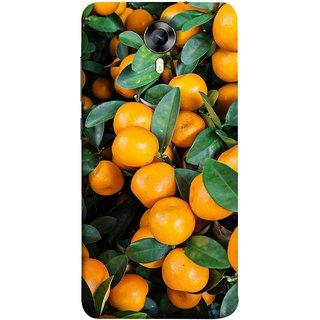 FUSON Designer Back Case Cover for Micromax CanvasNitro4G E371 (Orange Tree Farm Park Beautiful Green Leaves)