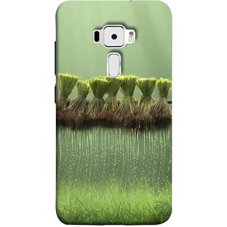 FUSON Designer Back Case Cover For Asus Zenfone 3 ZE520KL (5.2 Inches) (Sheaves Of Recently Harvested Rice Hanging To Dry)