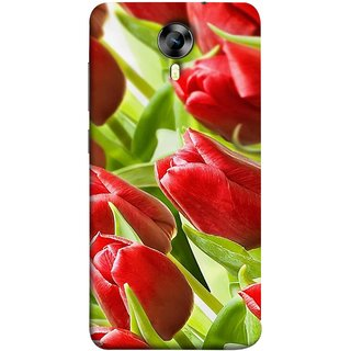 FUSON Designer Back Case Cover for Micromax CanvasNitro4G E371 (Close Up Red Roses Chocolate Hearts For Valentines Day)