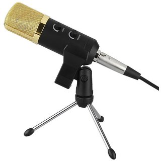 Aeoss Professional Microphone USB Condenser Microphone for Video Recording Karaoke Radio Studio Microphone for PC Comput