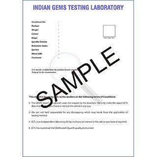 13 Mukhi RUDRAKSHA 100 Original Certified by lab