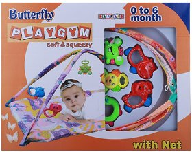 DDH Play Gym with Net