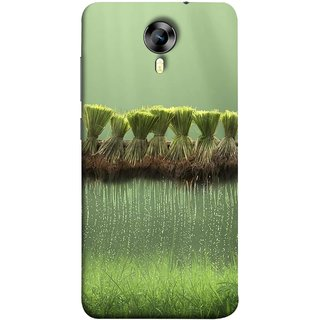 FUSON Designer Back Case Cover for Micromax CanvasNitro4G E371 (Sheaves Of Recently Harvested Rice Hanging To Dry)
