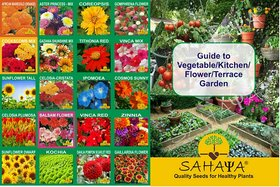 20 Varieties 4000  Seeds Of High Quality OrganicHybrid Flower Seed