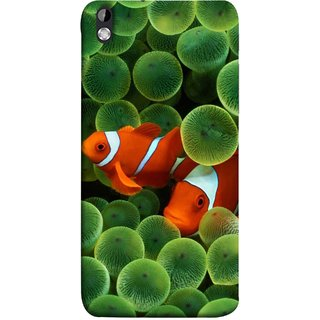 FUSON Designer Back Case Cover For HTC Desire 816 :: HTC Desire 816 Dual Sim :: HTC Desire 816G Dual Sim (White Orange Two Fish Water Salt Best Wallpapers Sea)