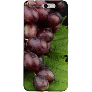 FUSON Designer Back Case Cover For InFocus M812 (Nature Farm Wine Organic Farm Agriculture Autumn )