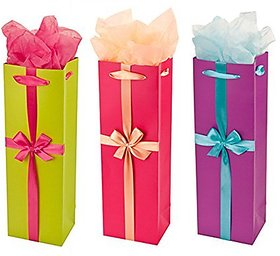 Party Trip Assorted Gift Bag (Set Of 3) | Party Gift Ba
