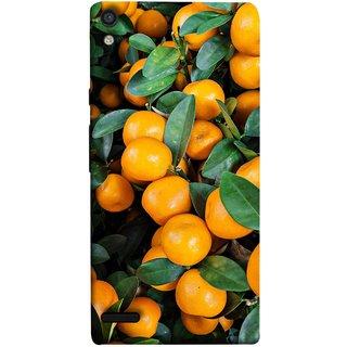 FUSON Designer Back Case Cover For Huawei Ascend P6 (Orange Tree Farm Park Beautiful Green Leaves)