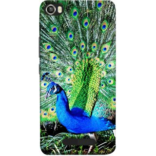 FUSON Designer Back Case Cover For Lava Iris X8 (Nice Colourful Long Attract His Mate Peacock Feathers Beak)