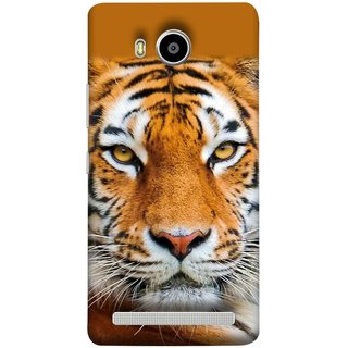 FUSON Designer Back Case Cover For Lenovo A7700 (Wild Jungle Tigers Whisker Roaring Sitting Safari India)