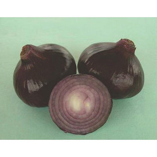 Onion Seeds, Black Gold Kanda Onions Seed, Blackish Red Pyaaz 200 Seeds by AllThatGrows