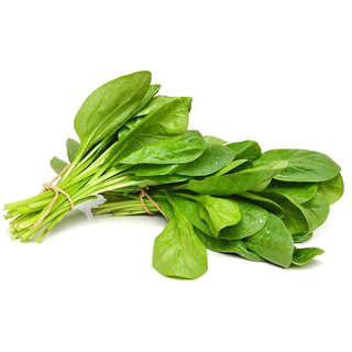 Spinach Seeds, Palak Vegetable Seeds Pack of 100 Seeds by AllThatGrows