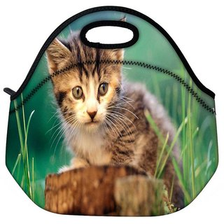 Poor Kitty Travel Outdoor Tote Lunch Bag
