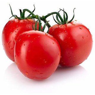 Tomato Seeds, Oval Shape Plum Tomatoes Plant Seeds 100 Seeds by AllThatGrows