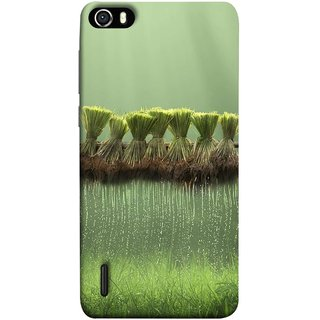 FUSON Designer Back Case Cover For Huawei Honor 6 (Sheaves Of Recently Harvested Rice Hanging To Dry)
