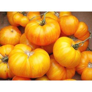 Tomato Seeds Zebra Yellow Heirloom Vegetable Seeds / average late 30 Seeds