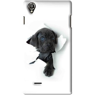 Snooky Printed Cute Dog Mobile Back Cover For Lava Iris 800 - White