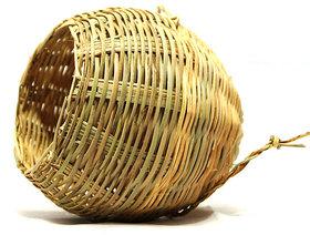 100 Eco Friendly Bird Nest- Cocoon Type