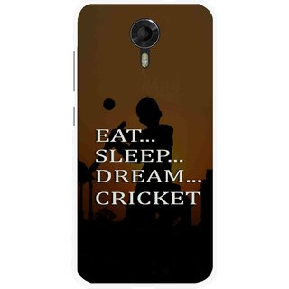 Snooky Printed All Is Cricket Mobile Back Cover For Micromax Canvas Xpress 2 E313 - Multicolour