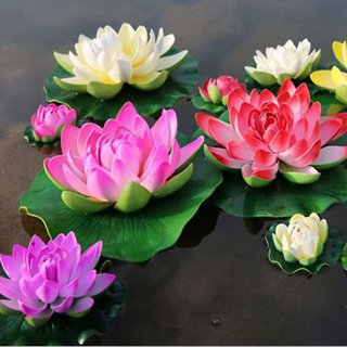 ChoosePick Lotus MultiColor Seeds  (24000 Seeds Per Packet)