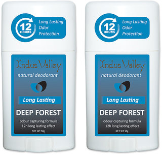 Deep Forest Natural Deo Stick Long Lasting Odor Protection 100 ml Combo Pack Of 2