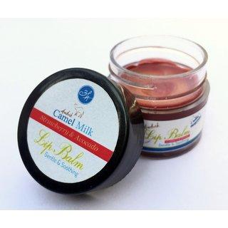 Aadvik Camel Milk Lip Tint ( Pink Pomegranate ) 6 gms. Pack