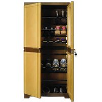 Nilkamal Freedom Mini Shoe Cabinet 18 Sandy Brown-Dark Brown