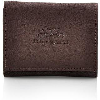 Blizzard Men Brown Artificial Leather Wallet (7 Card Slots)