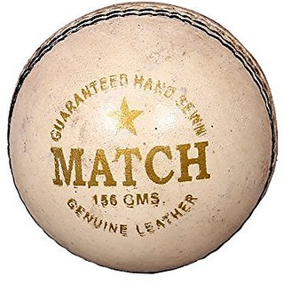 Aryans Match White Cricket Ball
