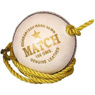 Aryans Match White Practice Cricket Ball