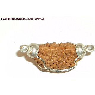 SSG Collections  Indian 1 Mukhi/Faced Rudraksha With Silver Coated Capping And GJSPC Lab Certificate  100 Original