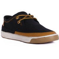 Eaguar Dual Toned Sneakers