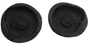 KESAR ZEMS Shaligram Laxmi Narayan with Sudarshan Chakra Stone 1.5 inchs