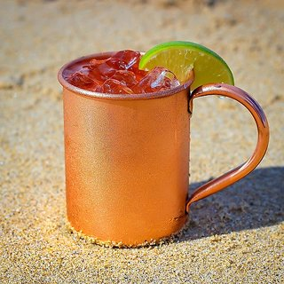 Tariq Lifestyle Solid Copper 16 Fluid Ounce Beer Mug with Copper Pipe Ear Shape Handle