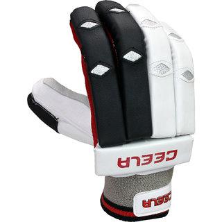 Ceela Sports Match Batting Gloves Youth RH