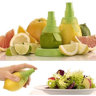 Portable mini fruit hand sprayer