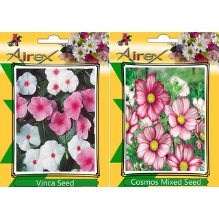 Flower Seeds By Airex Vinca, Balsam and Zinnia Mixed (Summer) Flower Seed (Pack Of 50 Seed * 3 Per Packet)
