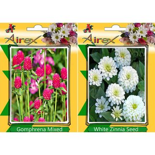 Flower Seeds By Airex Morning Glory, Cockscomb  and Zinnia Mixed (Summer) Flower Seed (Pack Of 25 Seed * 3 Per Packet)